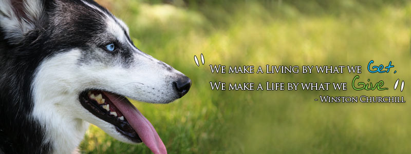 """""""We make a living by what we get, we make a life by what we give."""""""
