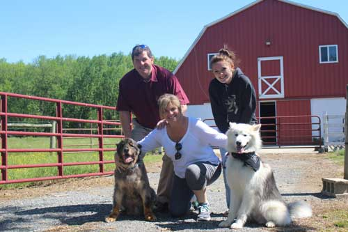 Nanuk the handsome Alaskan Malamute was adopted into his forever home recently. Good boy Nanuk!
