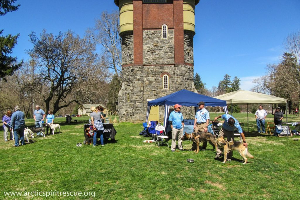 Some of our vendors at Arctic Spirit Rescue's first 5K and Dog Walk in West Chester, PA.