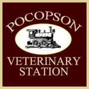 Pocopson Veterinary Station