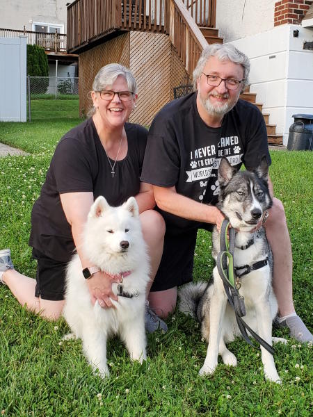 Artemis the Samoyed has been adopted!