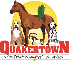 Quakertown Vet Clinic